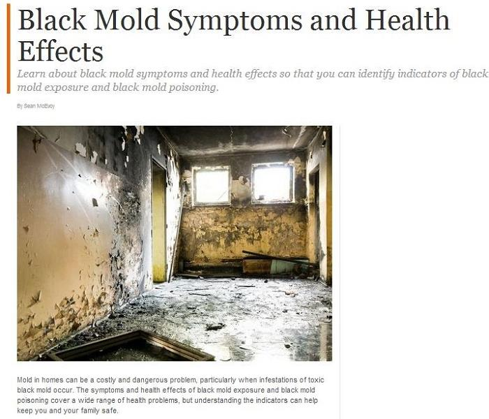 Mold Remediation Why It's Important to get Mold Damage Restoration in Laguna Hills