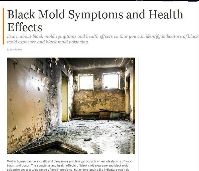 Water Damage Why It S Important To Get Mold Restoration In Laguna Hills
