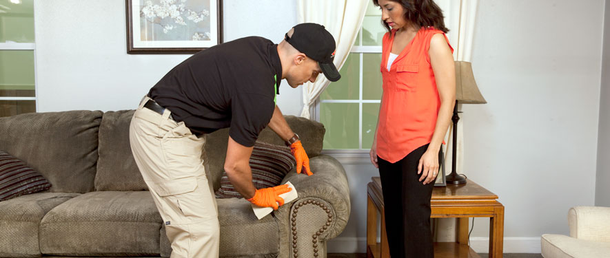 Laguna Hills, CA carpet upholstery cleaning